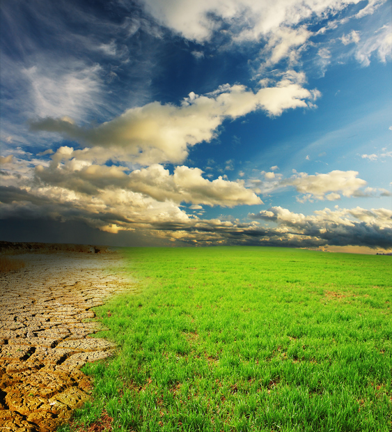 Green grass and cracked desert land over dramatic clouds