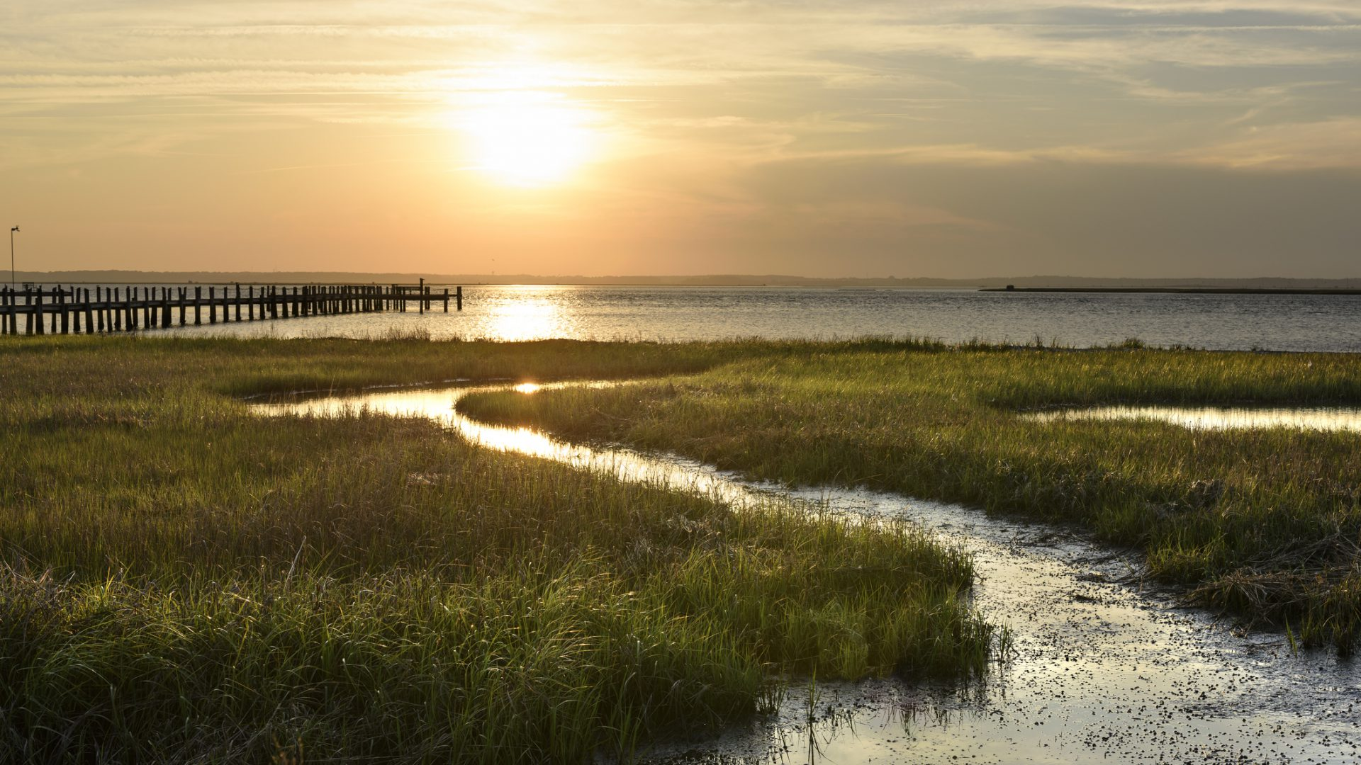 View of sunset over ocean inlet with green grasses and dock.